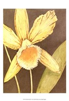 """Orchid & Earth I by Megan Meagher - 13"""" x 19"""" - $12.99"""