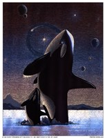 Orcas in the Sky Fine Art Print