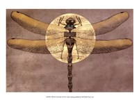 Full Moon Serenade I Framed Print