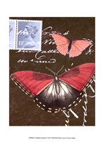 """Le Papillon Script II by Vision Studio - 10"""" x 13"""""""