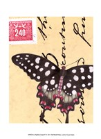 """Le Papillon Script IV by Vision Studio - 10"""" x 13"""""""