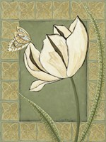 Ivory Tulip II by Chariklia Zarris - various sizes