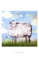"13"" x 19"" Sheep Pictures"