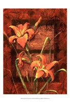 """Day Lily II by Janet Stever - 13"""" x 19"""""""