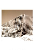 Fences in the Sand II Fine Art Print