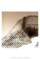 Fences in the Sand III Fine Art Print