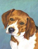 Dog Portrait-Beagle by Jill Sands - various sizes - $17.49