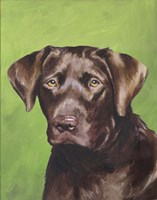 Dog Portrait-Chocolate Fine Art Print