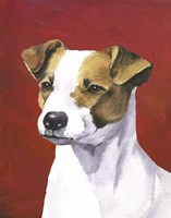 Dog Portrait-Jack Fine Art Print