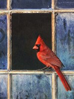 Cardinal Window by Chris Vest - various sizes