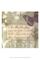 Butterfly Notes VII Framed Print