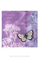 Butterfly Notes VIII Fine Art Print