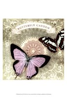 Butterfly Notes XII Framed Print