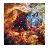 A Hubble Space Telescope image of the R136 Super Star Cluster Framed Print