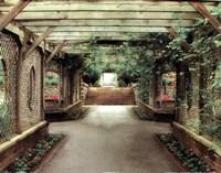 opulent garden IV Fine Art Print