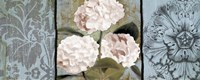 Pink Hydrangeas Panel I Fine Art Print