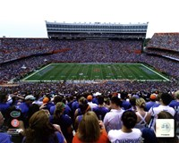 Ben Hill Griffin Stadium University of Florida Gators 2011 Fine Art Print