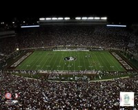 Doak Campbell Stadium Florida State University Seminoles 2011 Fine Art Print