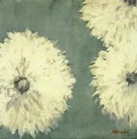 Floral Cache II Fine Art Print