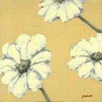 Floral Cache IV Fine Art Print