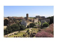 Look from Palatine Hill Francesca Romana, Arch of Titus and Colosseum, Rome, Italy - various sizes