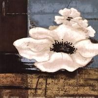"White Poppies II by Patricia Pinto - 6"" x 6"""