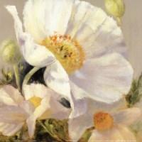 """Sunbeam Flowers I by Lanie Loreth - 12"""" x 12"""" - $9.99"""