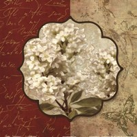 """Tuscan Glimpse I by Elizabeth Medley - 12"""" x 12"""""""