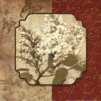 """Tuscan Glimpse II by Elizabeth Medley - 12"""" x 12"""""""