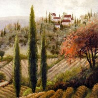 Tuscany Vineyard II Fine Art Print