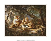 Leopard with Cub Fine Art Print