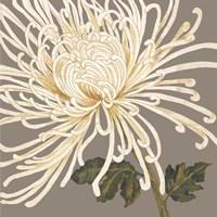 Glorious Whites II Framed Print