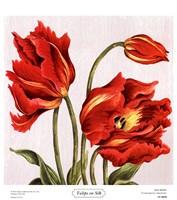 Tulips on Silk Fine Art Print