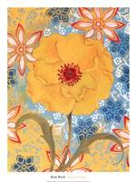 """Sunrise Poppy by Kate Birch - 20"""" x 26"""""""