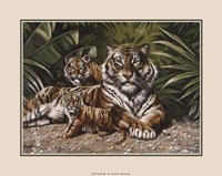 Yellow Tigers With Cubs Fine Art Print
