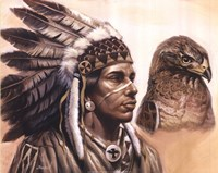 Young Hawk Fine Art Print