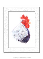 Rooster Insets II Fine Art Print