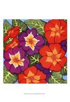 Flower Fiesta I Fine Art Print