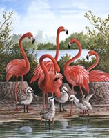Flamingo 1 Fine Art Print