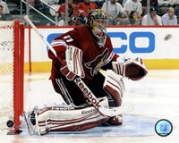 """Mike Smith 2011-12 Playoff Action - 10"""" x 8"""", FulcrumGallery.com brand"""