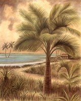 "Island Palm II by Ron Jenkins - 22"" x 28"""