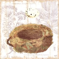 Botanical Nest I Fine Art Print
