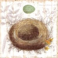 Botanical Nest II Fine Art Print