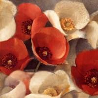 "Poppies Bloom II by Albena Hristova - 18"" x 18"", FulcrumGallery.com brand"
