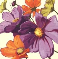 Cosmos II Fine Art Print