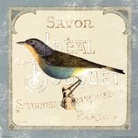 """Parisian Bird II by Sue Schlabach - 12"""" x 12"""""""