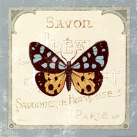 """Parisian Butterfly I by Sue Schlabach - 12"""" x 12"""""""