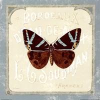 "Parisian Butterfly by Sue Schlabach - 12"" x 12"""