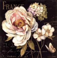 Marche de Fleurs on Black Fine Art Print