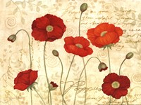 Poppies In Bloom Fine Art Print
